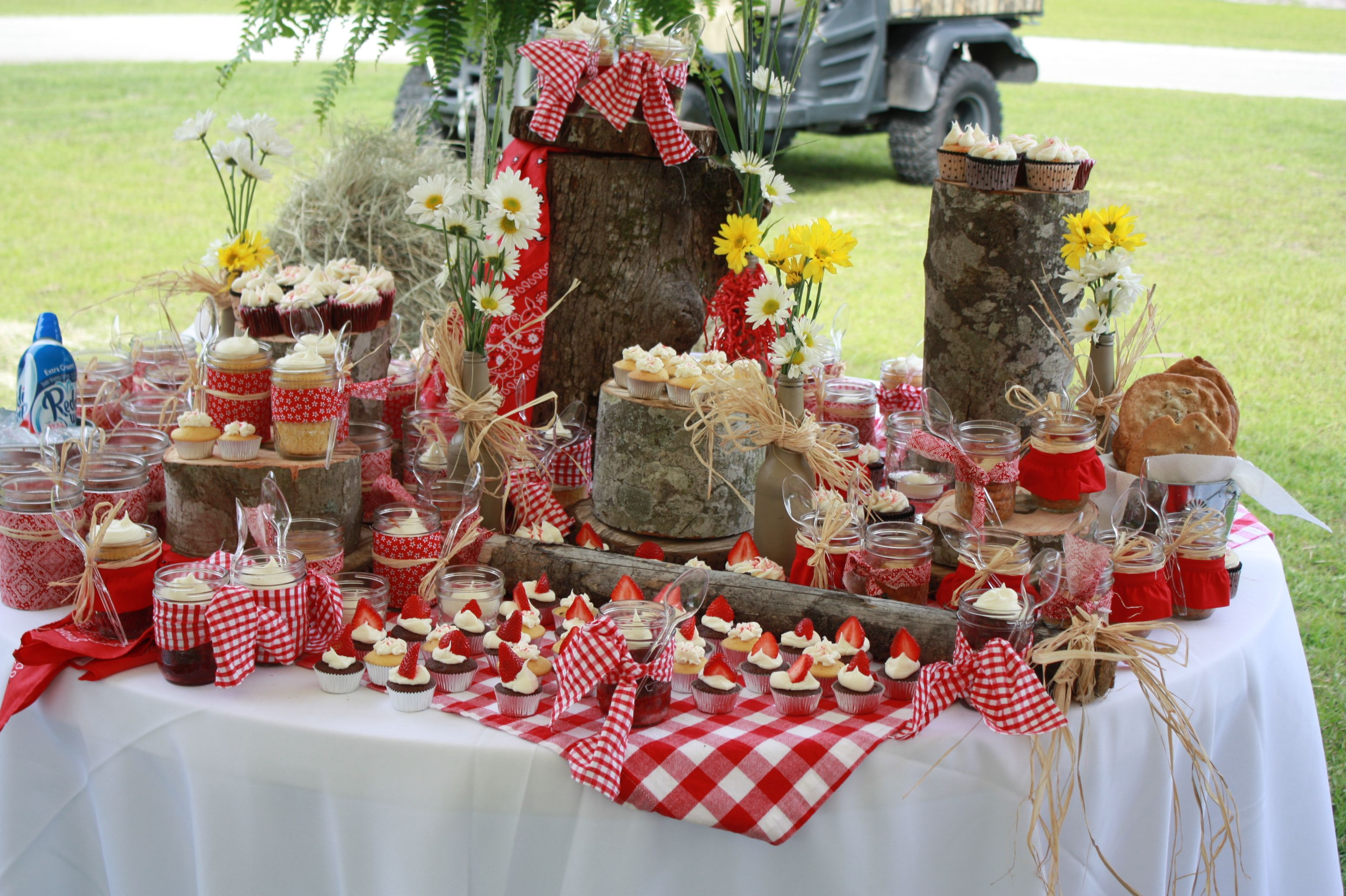 Picnic Themed Decorations Table At A Country Party Asilverwareaffair A