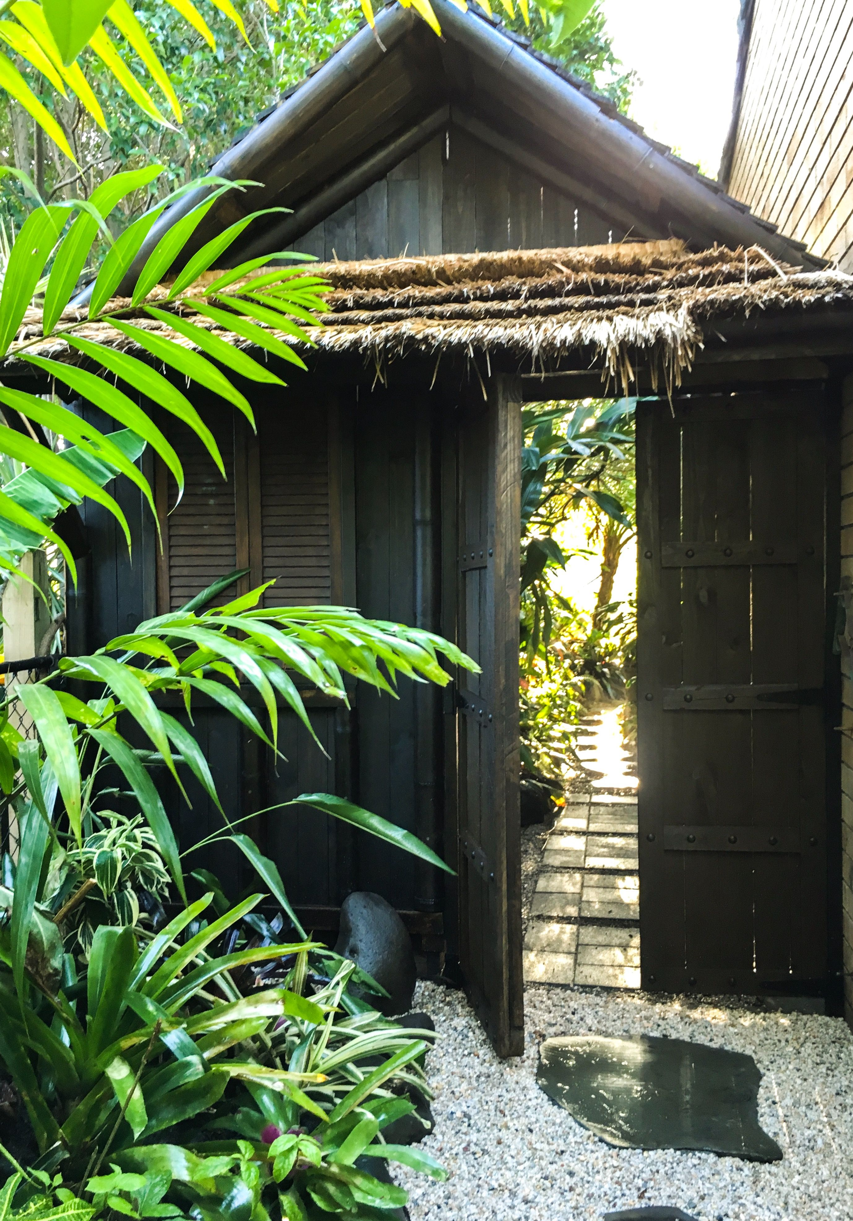 Garden shed, access to backyard, and tropical setdressing