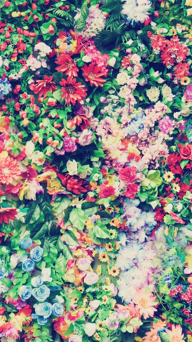 27 Floral iPhone 7 Plus Wallpapers for a Sunny Spring ...