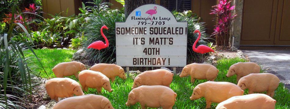 Dont buy a card fill their yard birthday yard signs