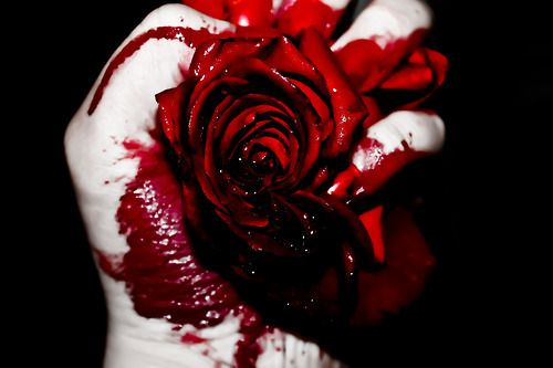 my love is the red rose - my heart is the blood- both are crushing and are falling apart.