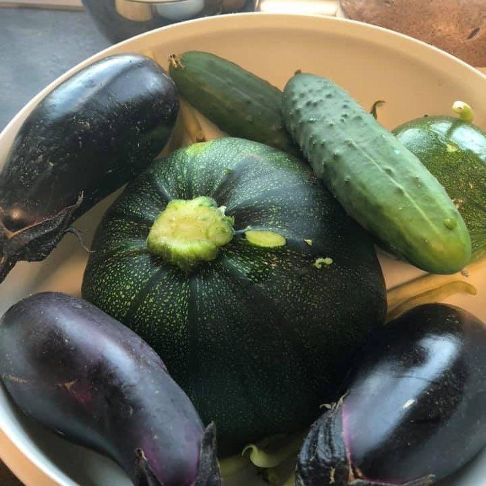 Melanzani Und Zucchini Kochen Mit Gemuse Aus Dem Eigenen Garten Lecker Garten Amc Amcaustria Besseressenbesser Watermelon Unsecured Credit Cards Vegetables