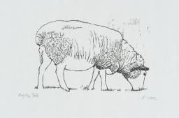 Henry Moore OM, CH 'Sheep Grazing', 1974 © The Henry Moore Foundation. All Rights Reserved