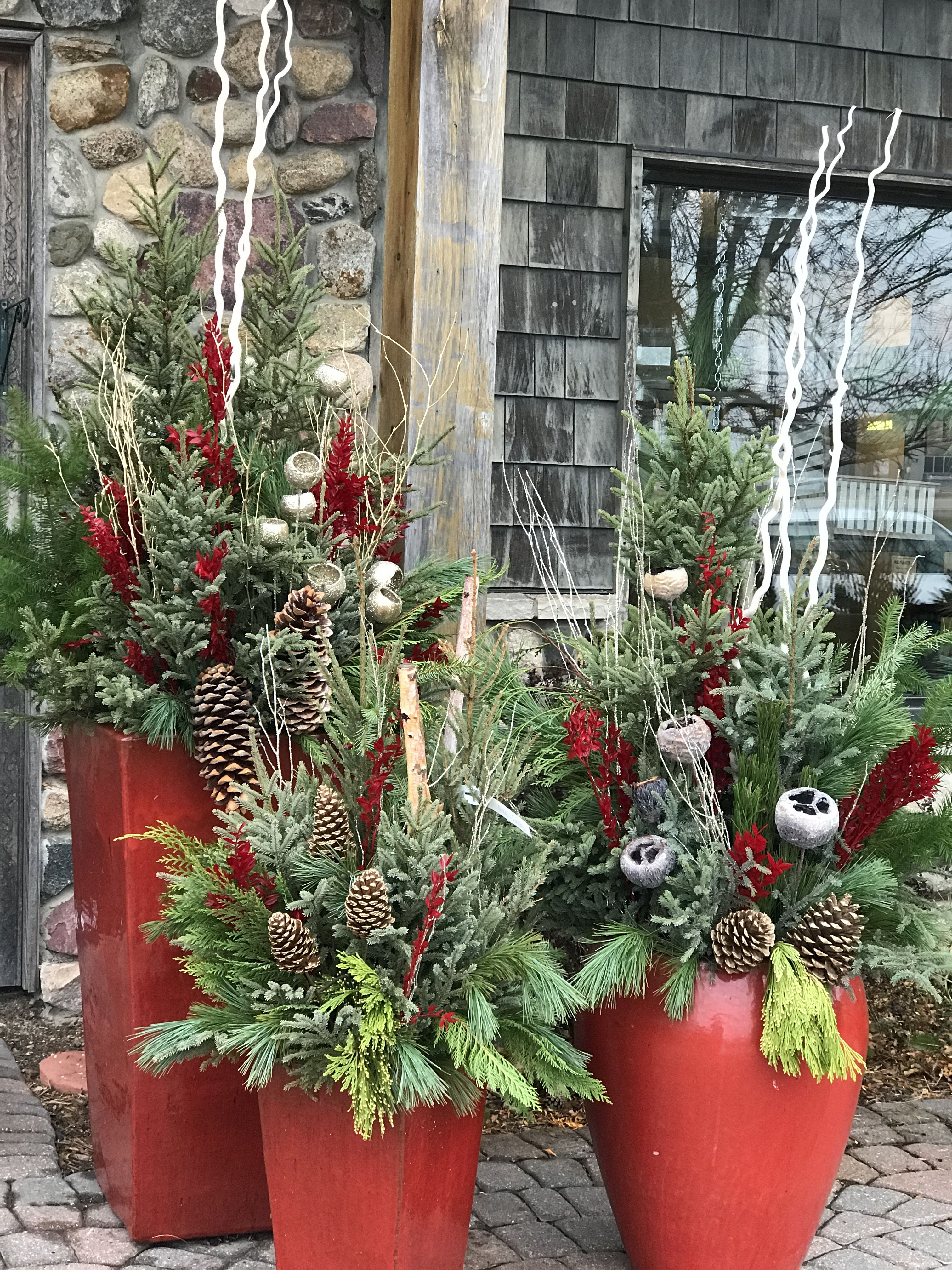Gorgeous Winter Planters Spruce Tip Pots Holiday