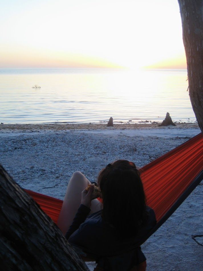 Tiger Key Campsite while hiking and canoeing in 10000 Islands Everglades Florida.