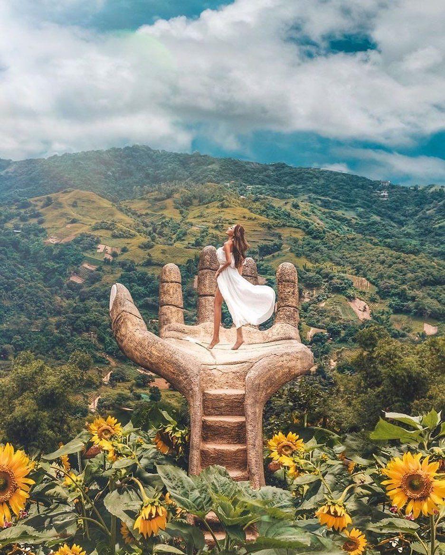 Dreamland. 🍃🌻 📍 Sirao Flower Garden, Cebu 📸 ooo_lin_ooo