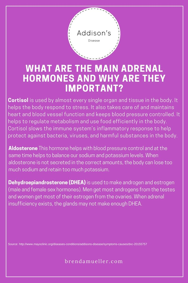 What Are The Main Adrenal Hormones And Why Are They Important
