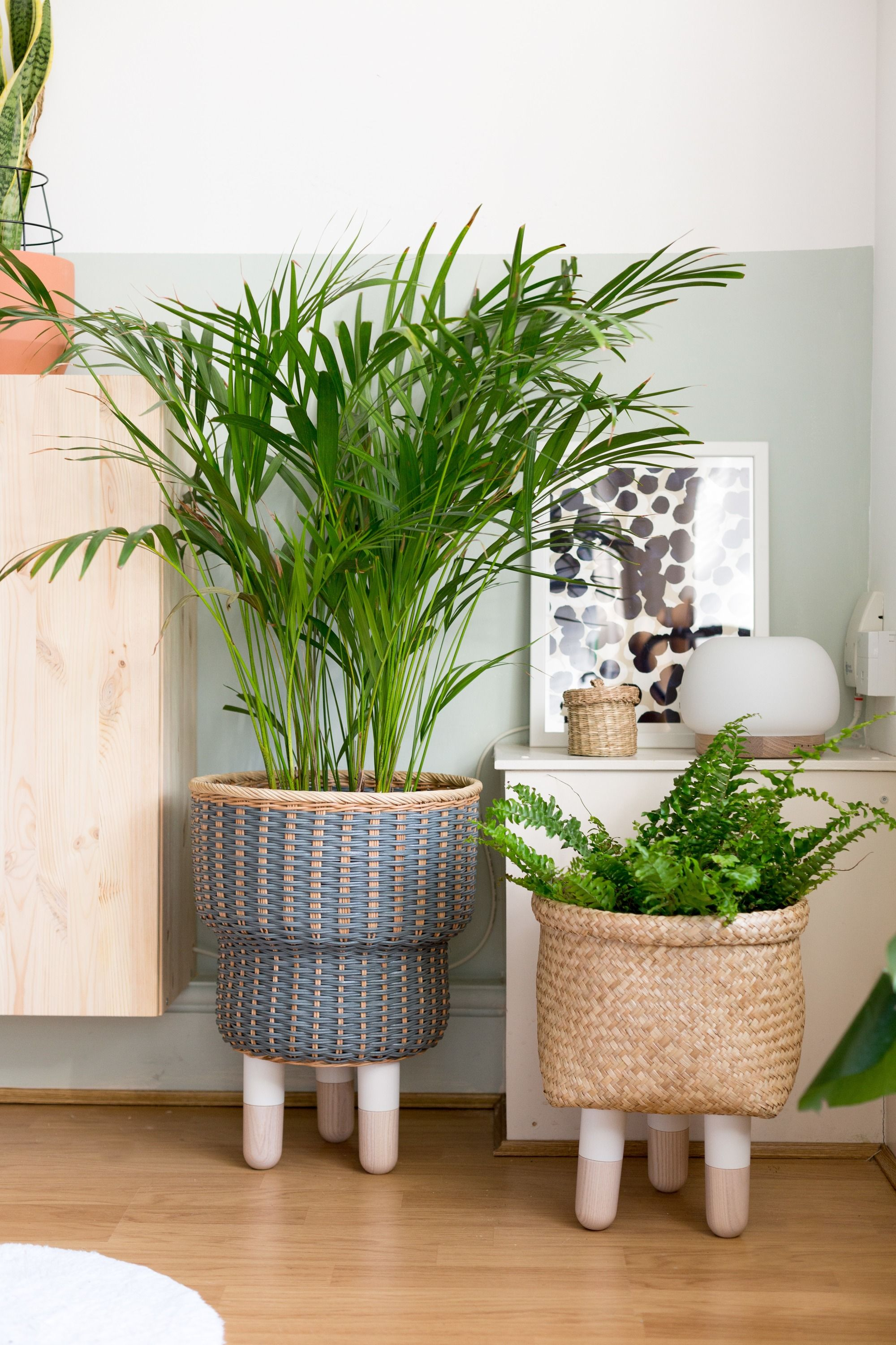 6 Indoor Plant Pot Ideas No One Will See Coming Indoor Plant Pots Ikea Furniture Hacks Furniture Hacks