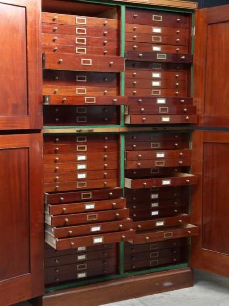 A Pair Of Specimen Museum Cabinets From Drew Pritchard