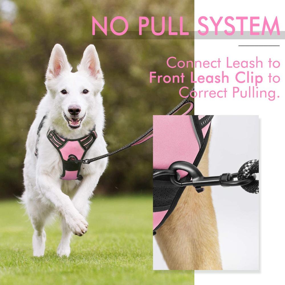 Amazon Com Rabbitgoo Dog Harness No Pull Pet Harness With 2 Leash Clips Adjustable Soft Padded Dog Vest Reflective No Cho Dog Harness Pet Harness Dog Vest