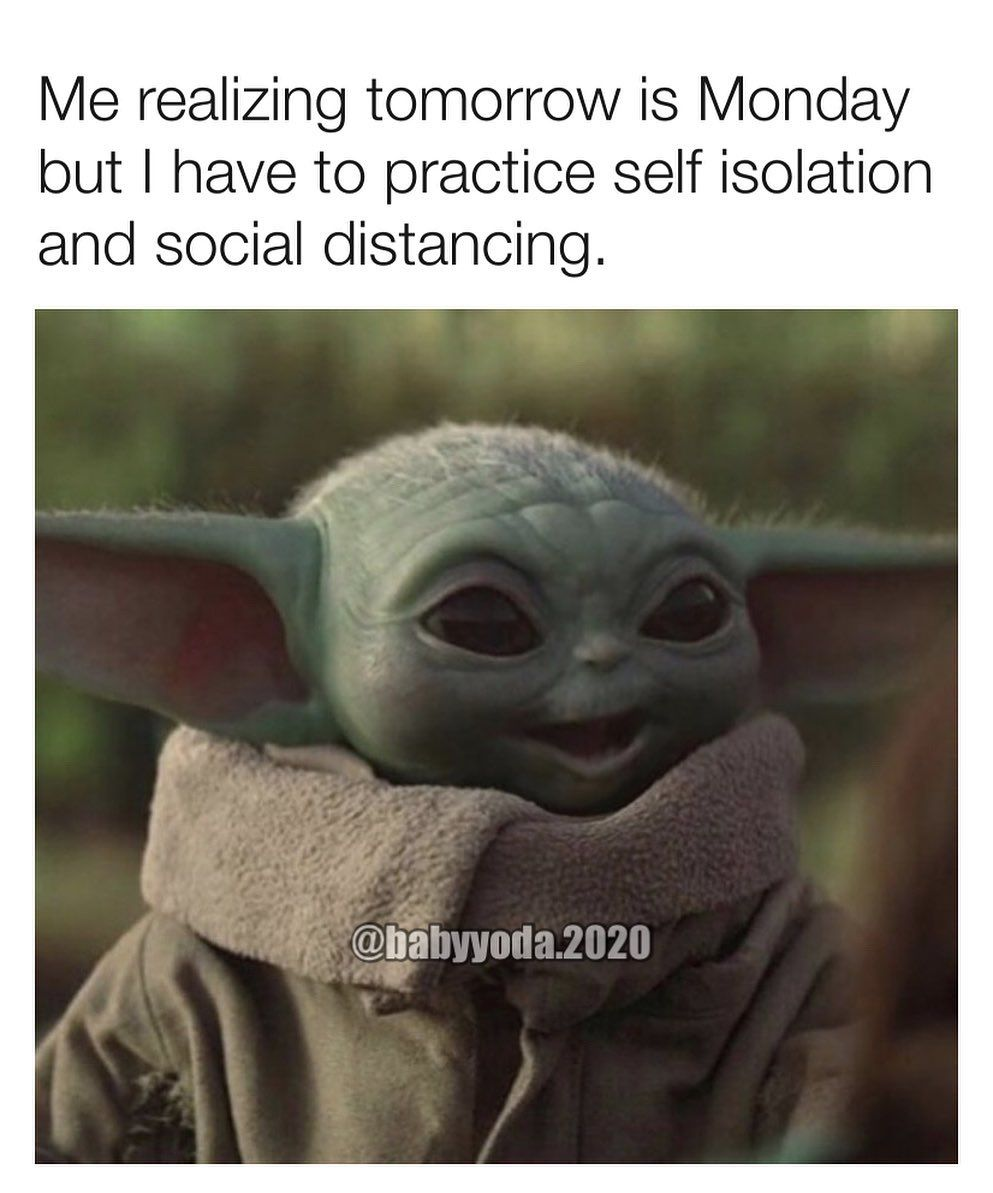 Baby Yoda One On Instagram How S Everyone Doing With Workingfromhome As Of Today My Province Has Declared Stat Yoda Meme Yoda Funny Funny Disney Characters