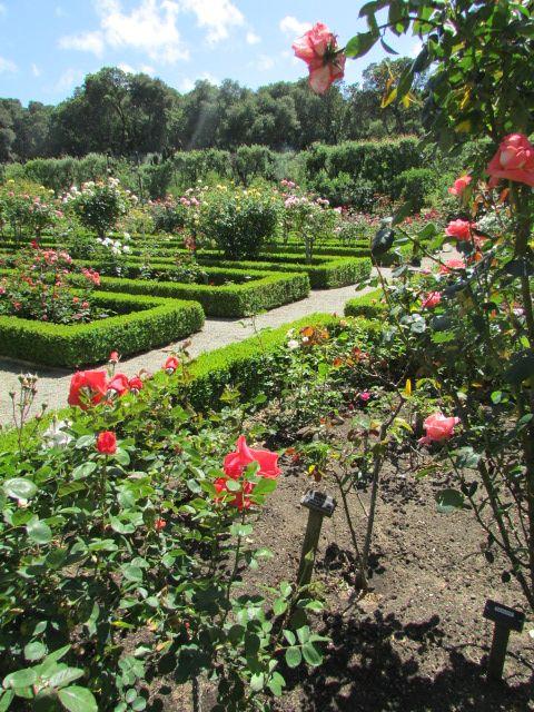 Filoli Gardens, Woodside, CA   San Francisco Bay Area   Pinterest ...