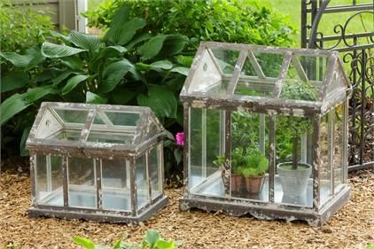 Photo of Greenhouse – Wood and Glass – Small