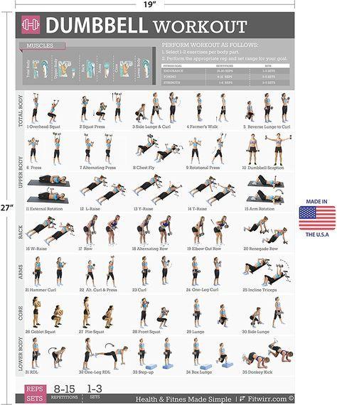 Amazon Dumbbell Exercises Workout Poster Now Laminated