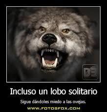Resultado De Imagen Para Frases De Lobos Solitarios Hijos