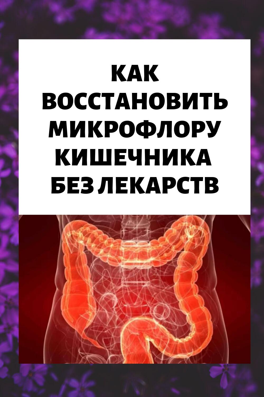 Как ВОССТАНОВИТЬ микрофлору кишечника БЕЗ лекарств: 10 ...