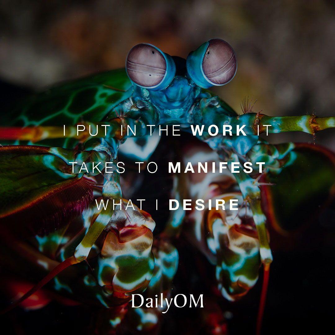 Dailyom affirmation quotes manifest desire dailyom