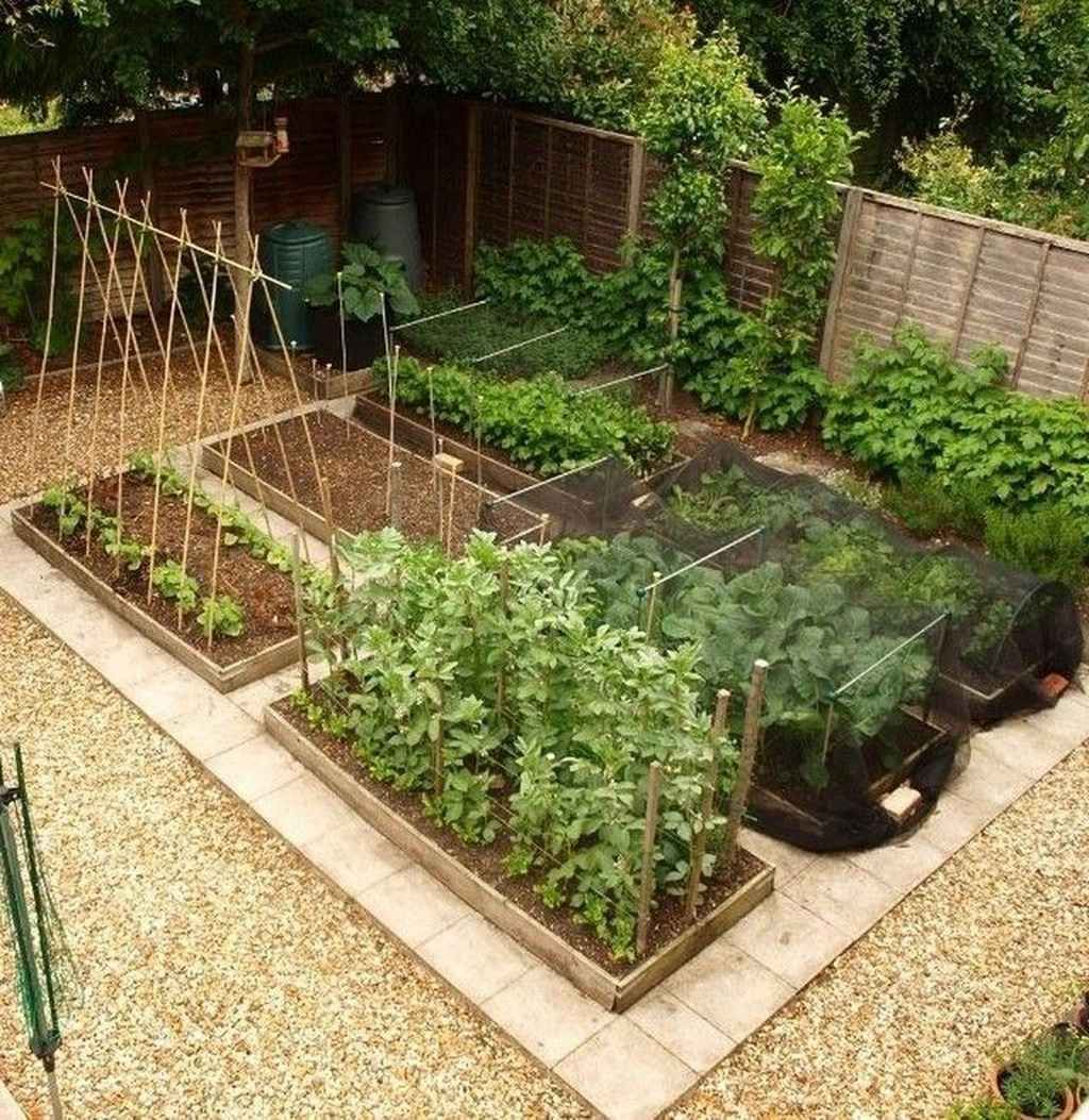 80 Affordable Backyard Vegetable Garden Design Ideas In