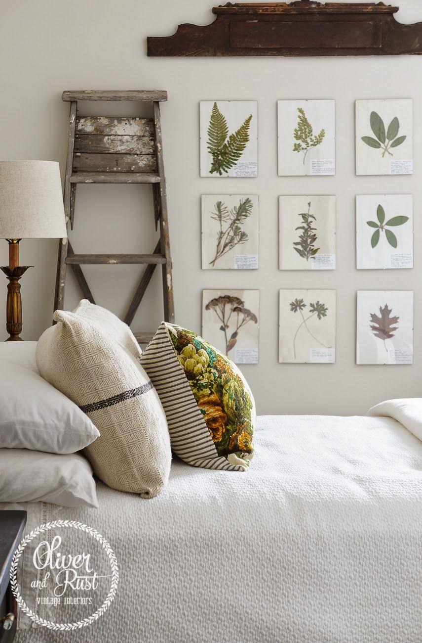 die besten 25 taube und olive ideen auf pinterest taube. Black Bedroom Furniture Sets. Home Design Ideas