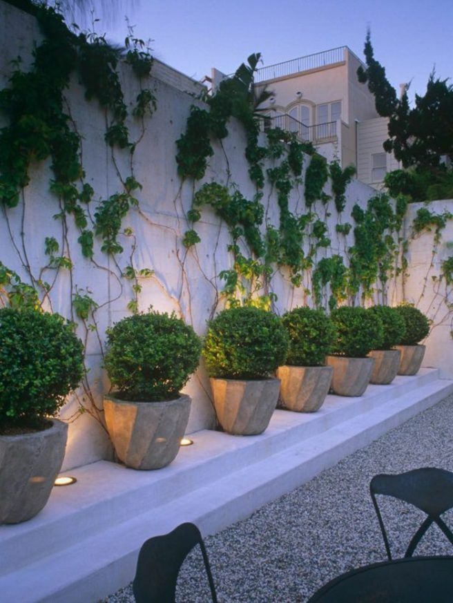 Ideas para diseñar un jardín sin césped home backyard Pinterest