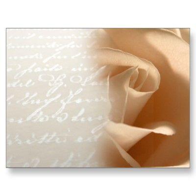 Cream Rose Wedding Customize Postcard