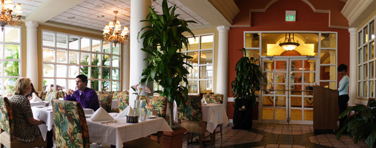Looking for an elegant dining experience in the Tampa Bay