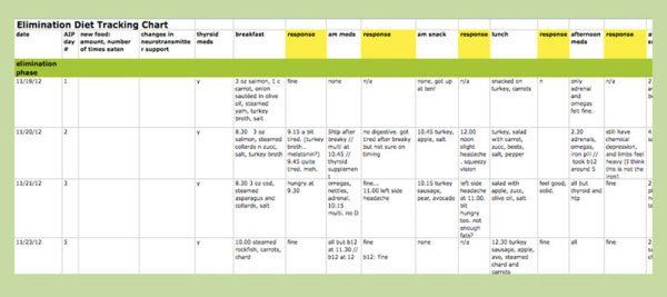 AIP Elimination Diet Spreadsheet Template - Backcountry Paleo