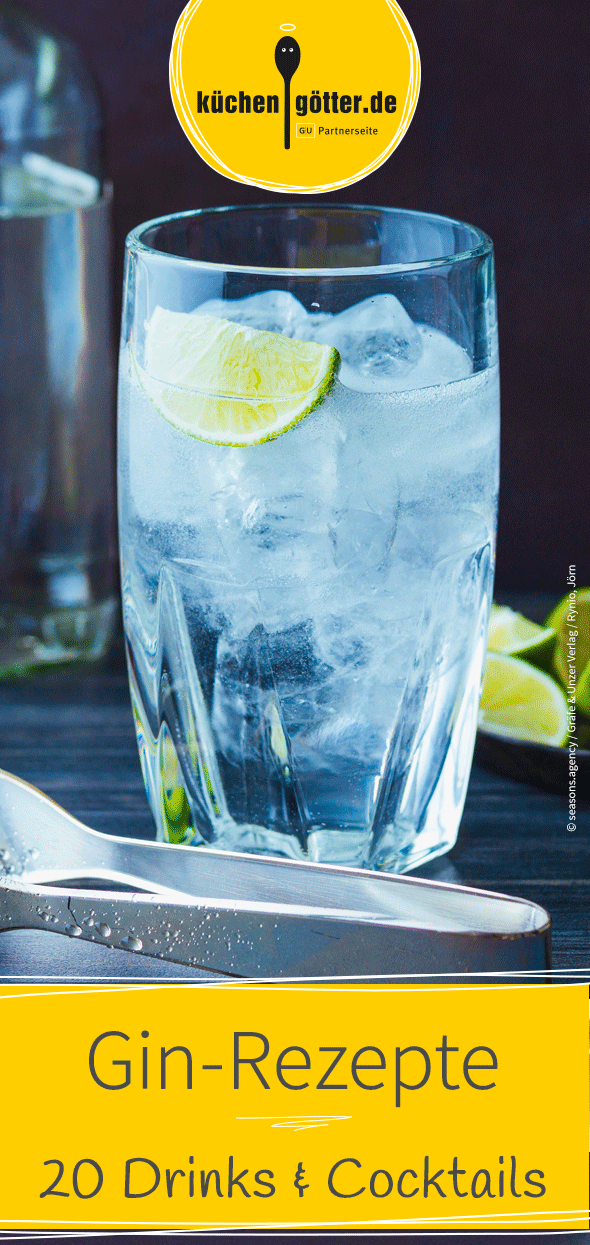 21 Drinks & Cocktails mit Gin