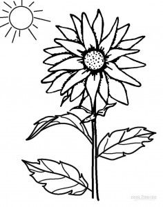 Sunflower Coloring Pages Printable Crafting Coloring Pages