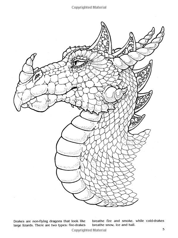 Dragons Coloring Book Dover Books Christy Shaffer 9780486420578