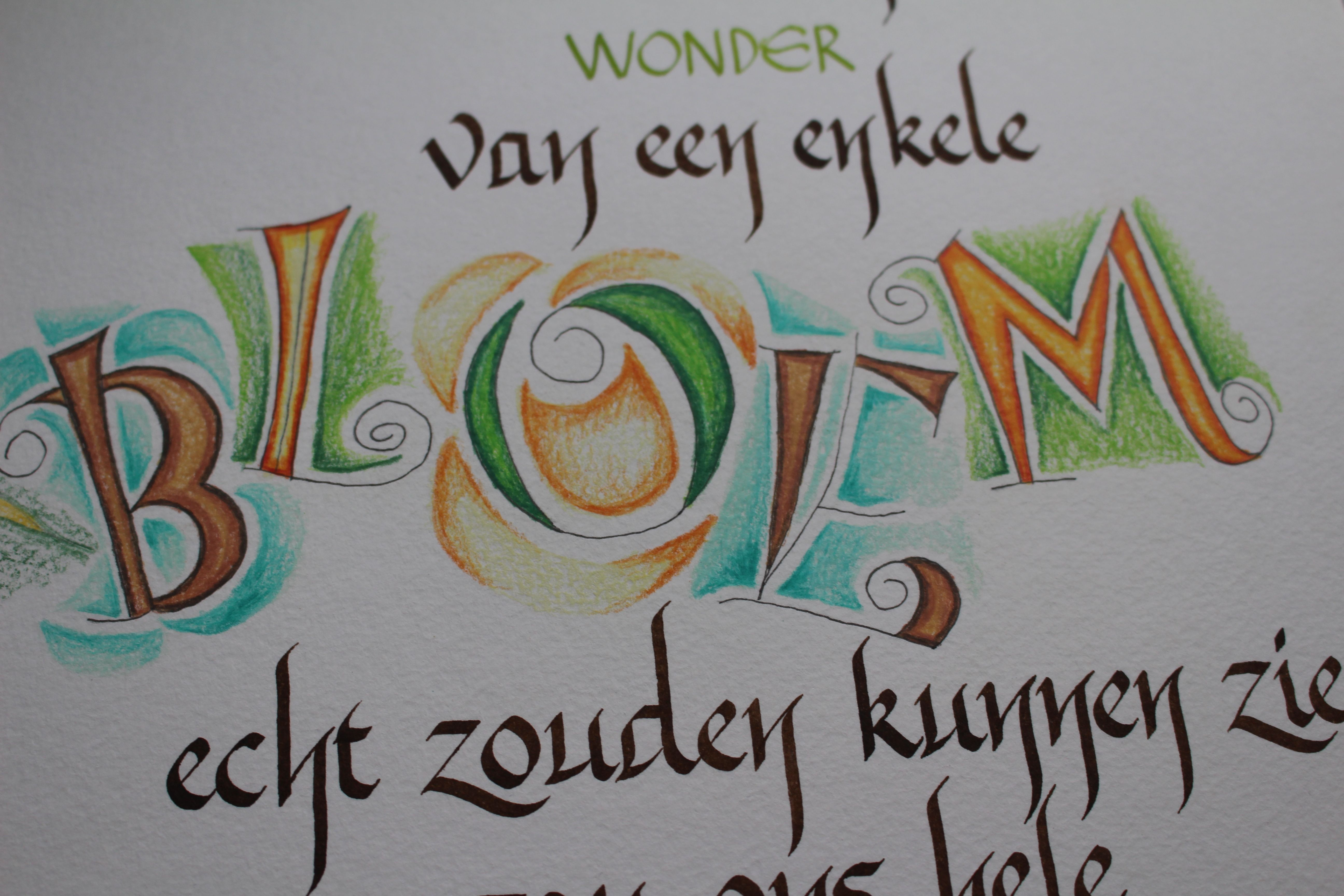 Detail van een vrije letter, geschreven met een watervaste inkt en aquarelpotlood ingekleurd, Kalligrafie van Margriet Ramp.