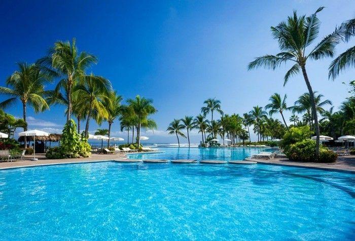 Garten Mit Pool luxus pool ein garten mit pool luxuriöse designs pool