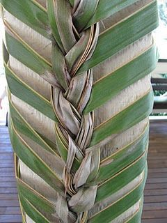 Palm Fronds Decorating A Column