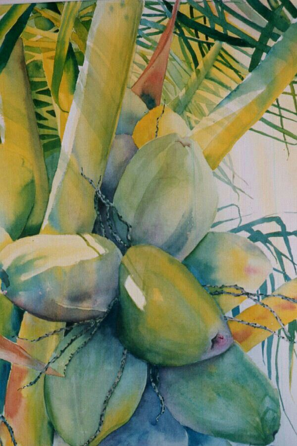 Coconut Watercolor Artists Watercolor Paintings Watercolor Flowers