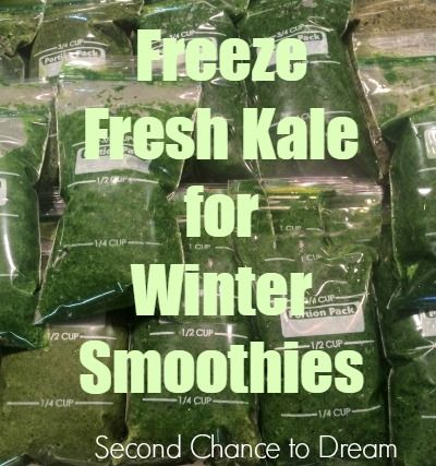 Second Chance to Dream: Freeze Fresh Kale for Winter Smoothies #recipes #cleaneating