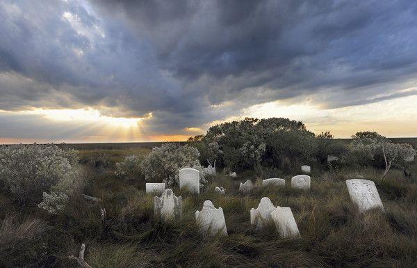 Abandoned graveyard on Holland Island. Photo taken by Astrid Riecken