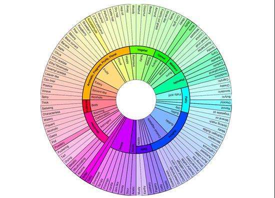La rueda sensorial de la cerveza