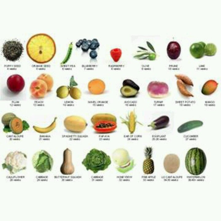The Food Fetus Size Comparison Chart A Great Visual Pregnancy