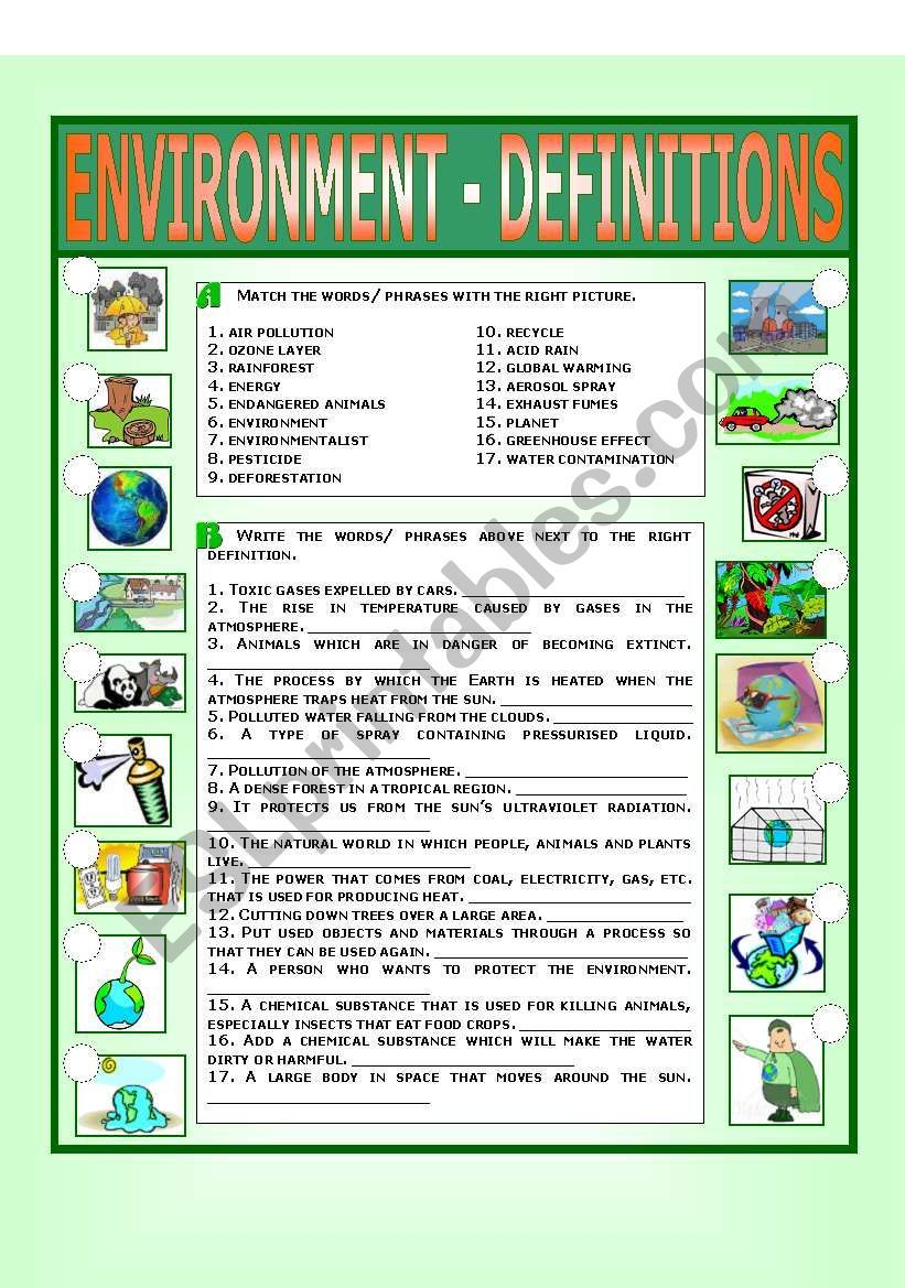 environment - definitions worksheet | lesson | pinterest