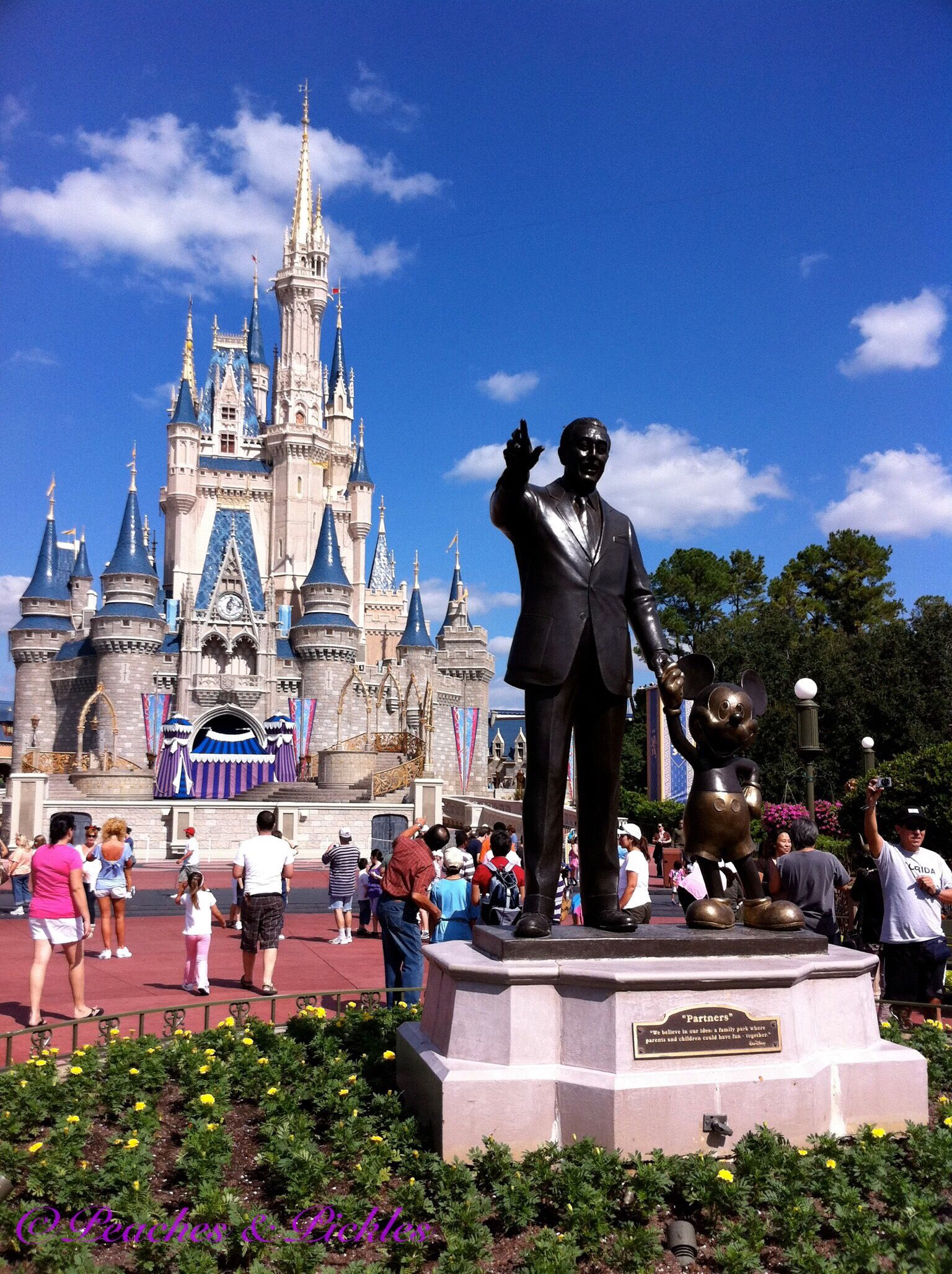 Tips For Having A Magical Disney Experience Before You Go Your