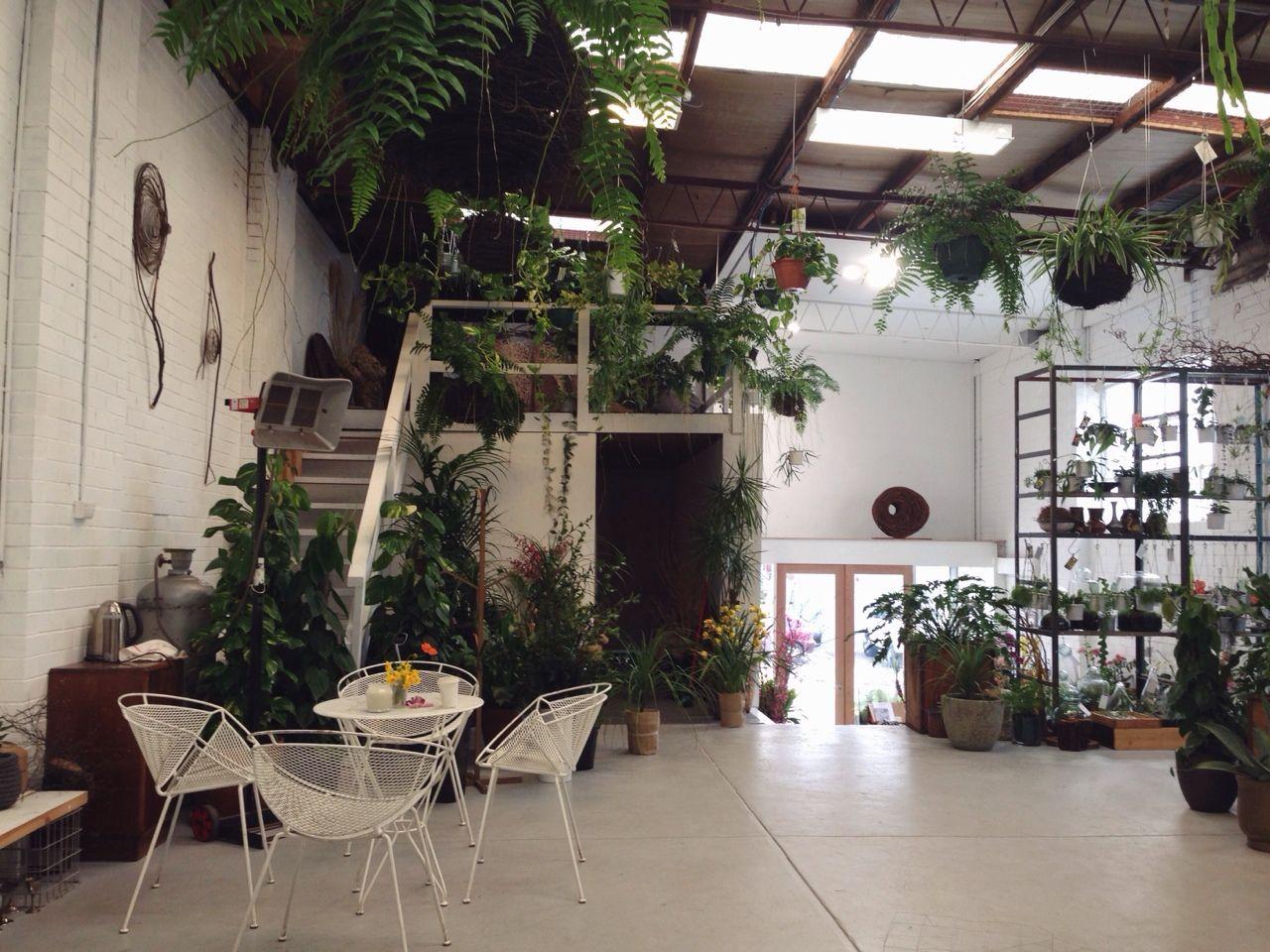 tumblr interior pinterest espace lumiere plantes et espace. Black Bedroom Furniture Sets. Home Design Ideas