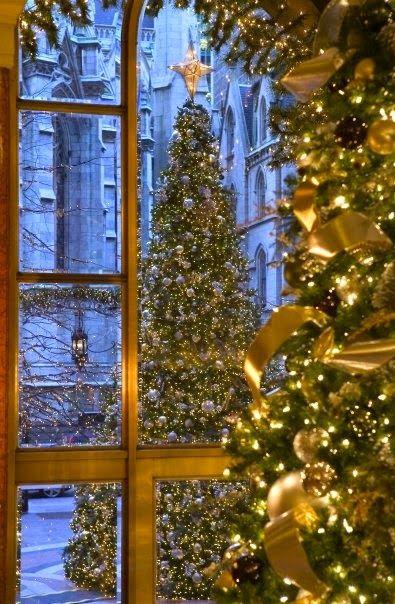 New York Palace Hotel Christmas, Christmas,Christmas Pinterest