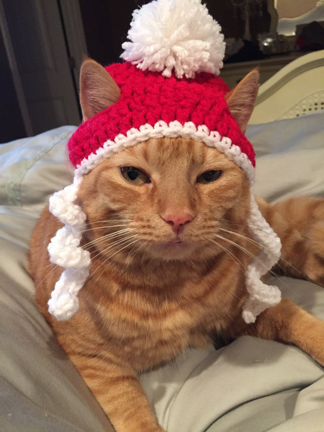 Crochet Christmas Santa Beanie Hat For Cat or Small Dog by ...