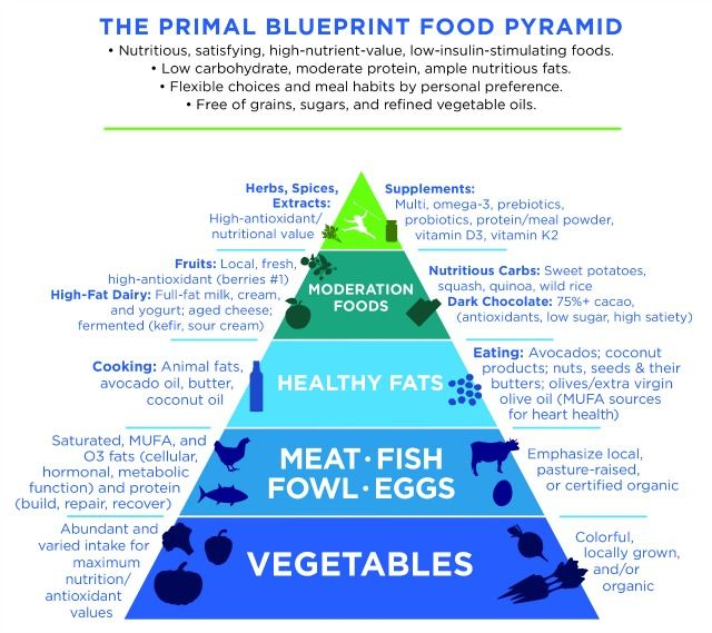 How to succeed with the primal blueprint food pyramid metabolic how to succeed with the primal blueprint food pyramid metabolic syndrome and health problems malvernweather Images