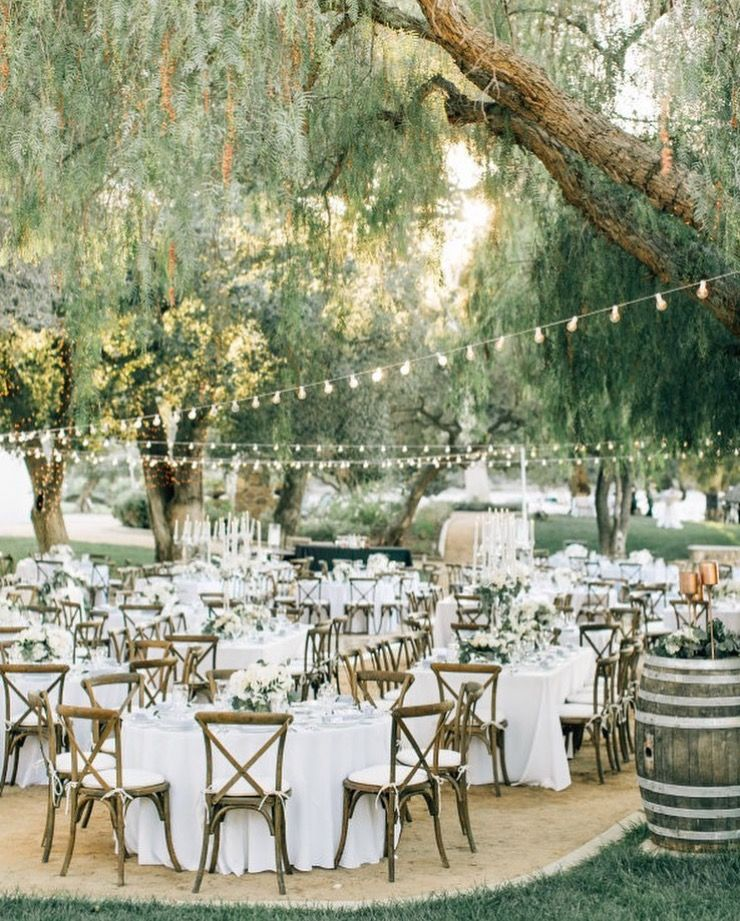 Outdoor Wedding Inspiration, Cafe Lights On Patio, Summer