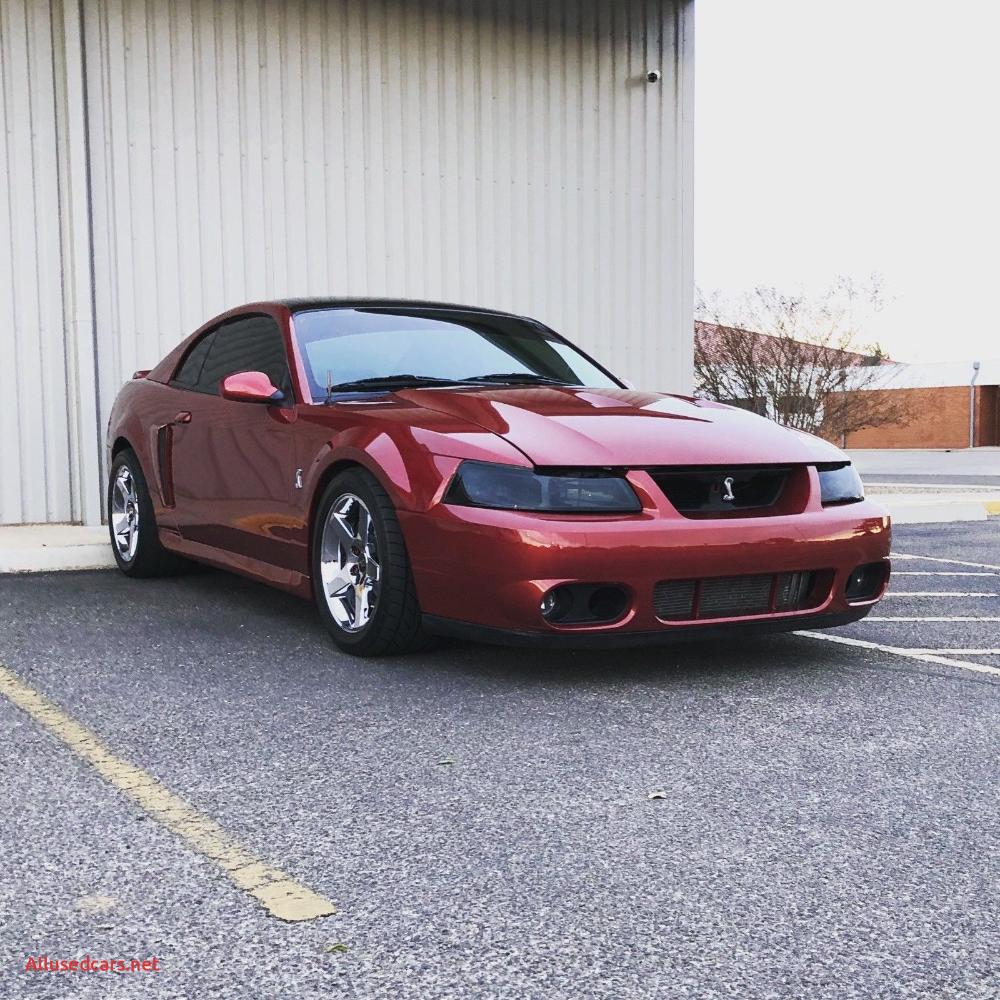 Inspirational 2004 Mustang Cobra In 2020