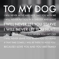 My promise to my dog/cat.