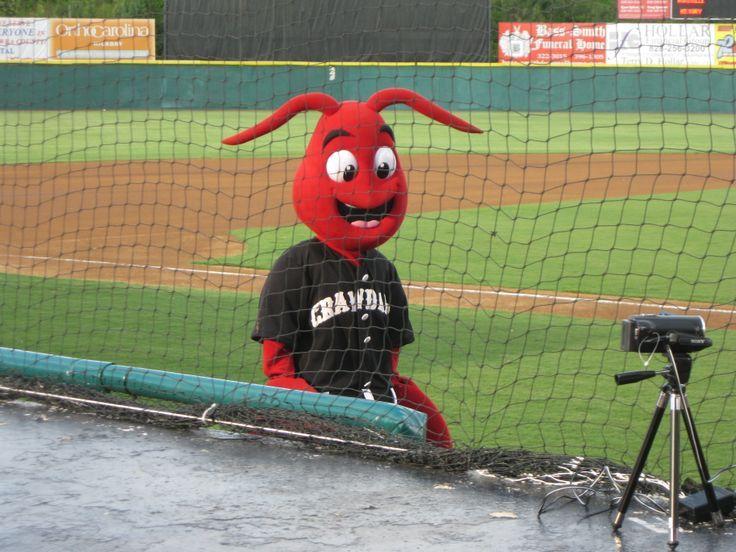 Conrad The Crawdad Hickory Crawdads Mascot South Atlantic League Mascot Minor League Baseball League