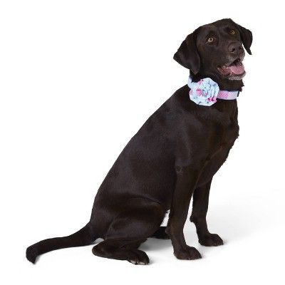 Patchwork Whale Collar Slide Pet Rosette Pink Blue One Size