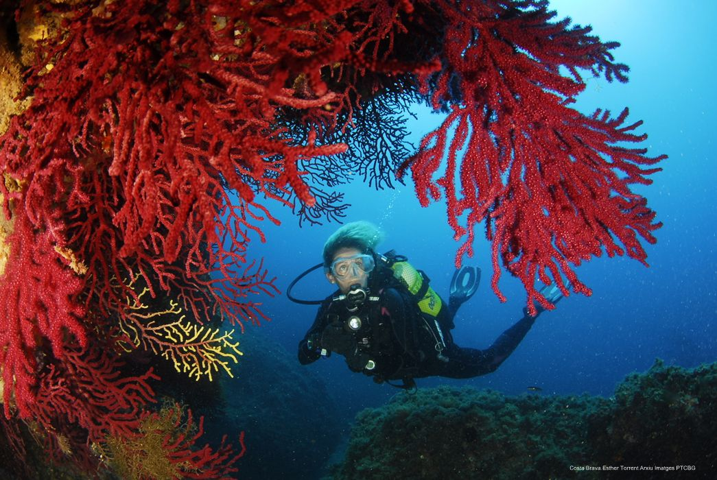 Costa Brava. Fotògraf Esther Torrent | Patronat de Turisme de la Costa Brava